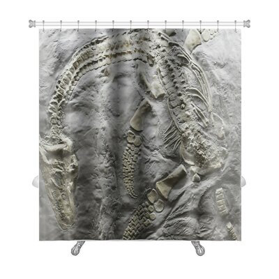 Dinosaurs Skeleton of Ancient Dinosaur Rock, Evolution Premium Shower Curtain