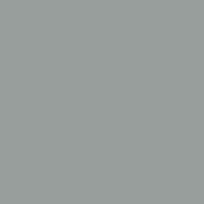 Gardinia Flächenvorhang