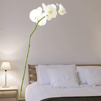 Crearreda Home Decor Line Orchid Wall Sticker