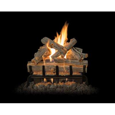 "Arizona Juniper Gas Log Set Burner Size: 21"" W"