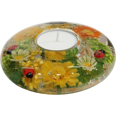 Dreamlight Teelichthalter Springfield aus Glas
