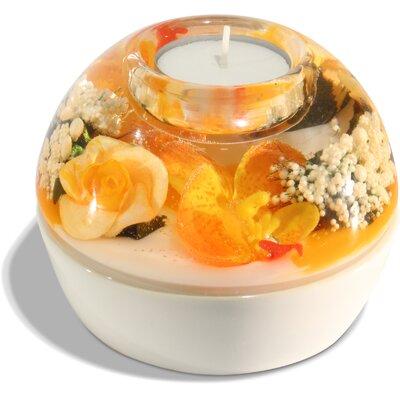 Dreamlight Teelichthalter Marleen aus Glas
