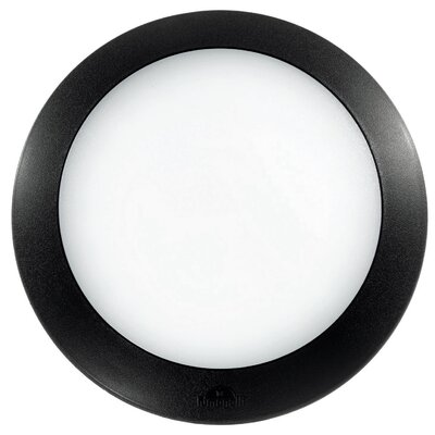 Ideal Lux Berta 1 Light Wall Lamp