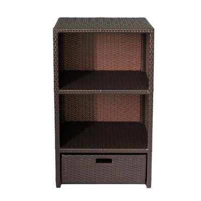 Nordin Indoor/Outdoor Freestanding Accent Cabinet