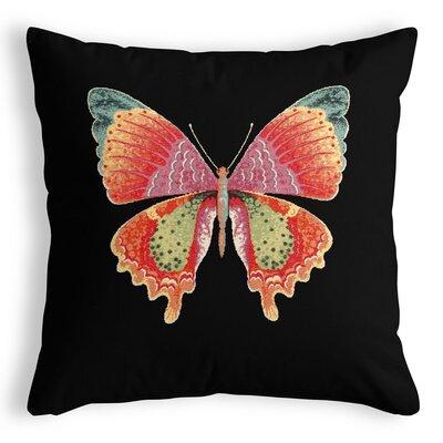 Home Ole Mariposa Cushion Cover