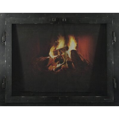 "Mountain Series Fireplace Glass Door Finish: Natural, Size: 30"" H x 42"" W x 3"" D"