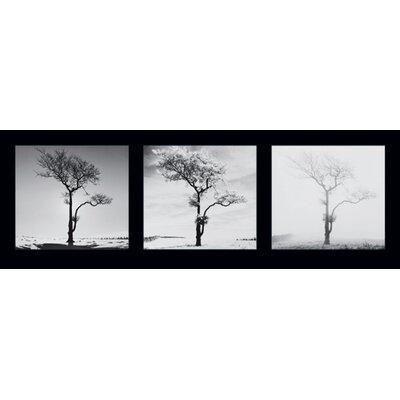 """DEInternationalGraphics """"Lone Trees"""" von Dave Butcher, Fotodruck"""