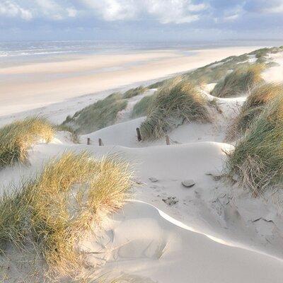 "DEInternationalGraphics Acrylglasbild ""Les dunes-pastel"" von Georges-Félix Cohen, Fotodruck"