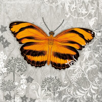 "DEInternationalGraphics ""Orange Butterfly I"" von Alan Hopfensperger, Grafikdruck"