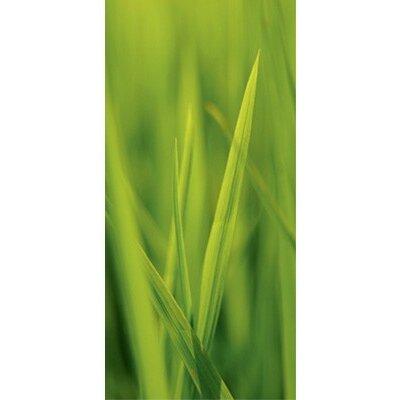 PPS. Imaging GmbH Tapete Feeling The Grass 210 cm H x 100 cm B