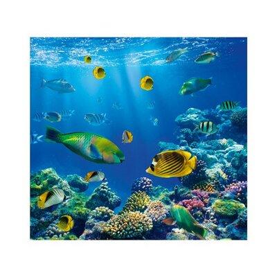 PPS. Imaging GmbH Tapete Underwater World 280 cm B cm H x 300 cm B