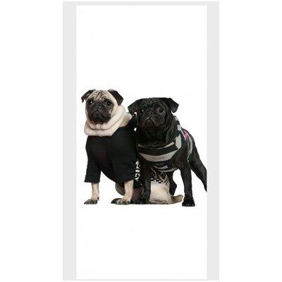 PPS. Imaging GmbH Tapete Posh Pug Dogs 210 cm H x 100 cm B
