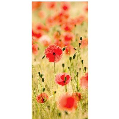 PPS. Imaging GmbH Tapete Dream of Poppies 210 cm H x 100 cm B
