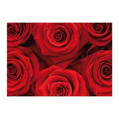 PPS. Imaging GmbH Tapete Sea of Roses 280 cm H x 400 cm B