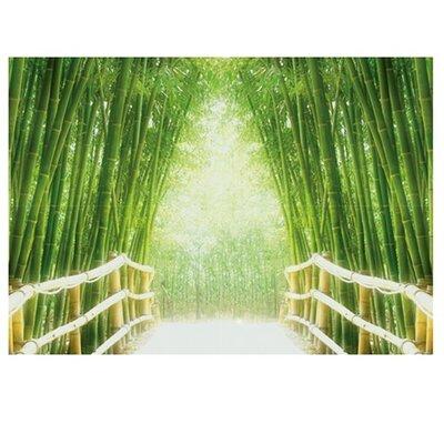 PPS. Imaging GmbH Tapete Bamboo Walk 280 cm B cm H x 400 cm B