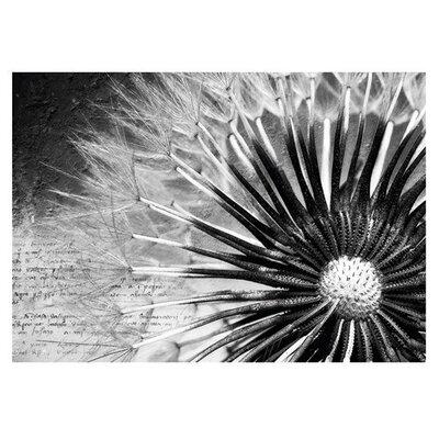 PPS. Imaging GmbH Tapete Dandelion Poems 280 cm B cm H x 400 cm B