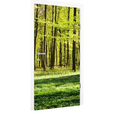 PPS. Imaging GmbH Tapete Waldwiese 215 cm B cm H x 96 cm B
