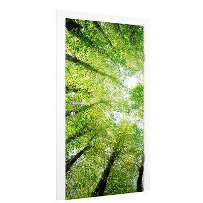 PPS. Imaging GmbH Tapete Bäume des Lebens 215 cm B cm H x 96 cm B