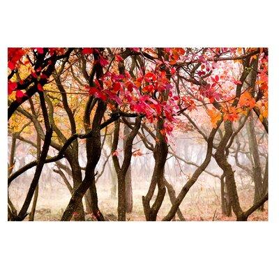 PPS. Imaging GmbH Tapete Japan im Herbst 190 cm H x 288 cm B