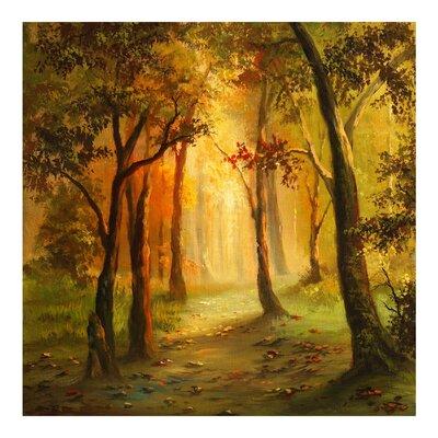 PPS. Imaging GmbH Tapete Gemälde einer Waldlichtung 240 cm H x 240 cm B