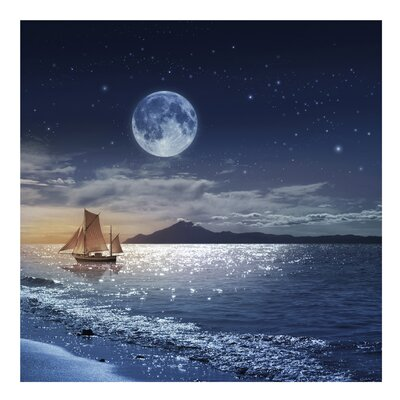 PPS. Imaging GmbH Tapete Moon Night Sea 240 cm H x 240 cm B