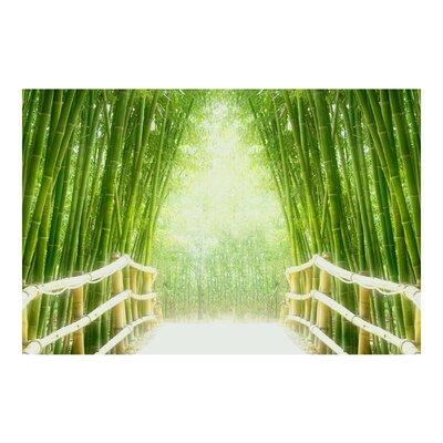 PPS. Imaging GmbH Tapete Bamboo Way 225 cm H x 336 cm B