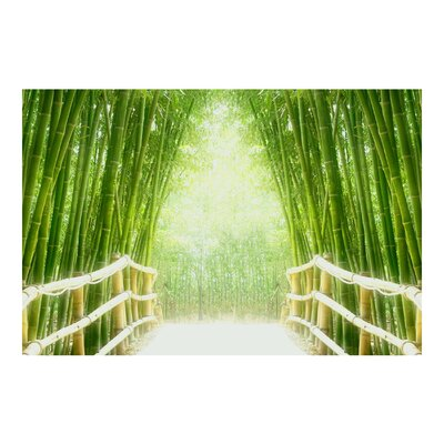 PPS. Imaging GmbH Tapete Bamboo Way 255 cm H x 384 cm B