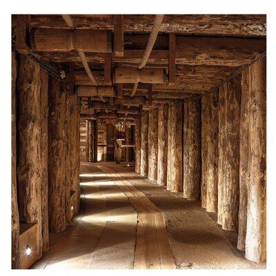 PPS. Imaging GmbH Tapete Alte Goldmine 288 cm H x 288 cm B