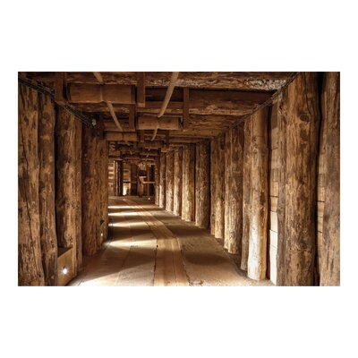 PPS. Imaging GmbH Tapete Alte Goldmine 320 cm H x 480 cm B