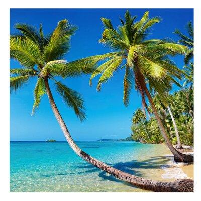 PPS. Imaging GmbH Tapete Beach of Thailand 240 cm H x 240 cm B
