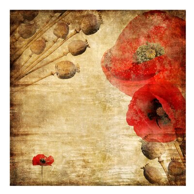 PPS. Imaging GmbH Tapete Poppy Flower 192 cm H x 192 cm B