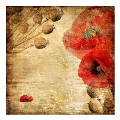 PPS. Imaging GmbH Tapete Poppy Flower 240 cm H x 240 cm B