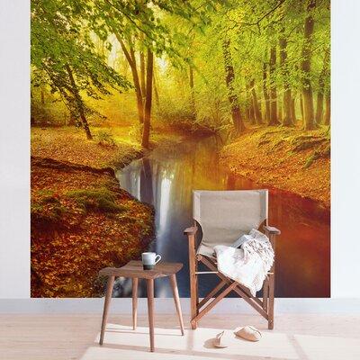PPS. Imaging GmbH Tapete Herbstwald in 336 cm H x 336 cm B