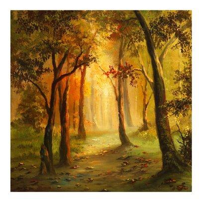 PPS. Imaging GmbH Tapete Gemälde einer Waldlichtung 288 cm H x 288 cm B