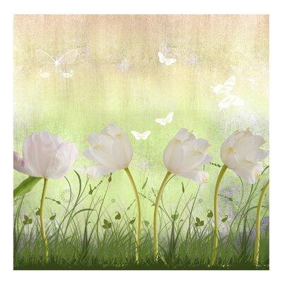 PPS. Imaging GmbH Tapete White Flowerfield 336 cm H x 336 cm B
