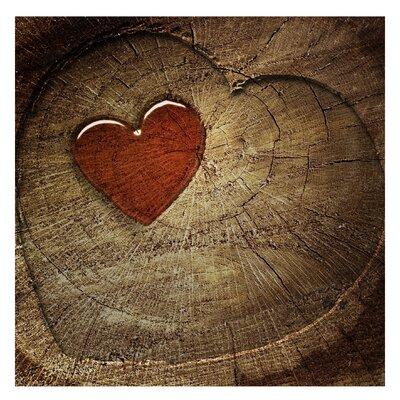 PPS. Imaging GmbH Tapete Natural Love 192 cm H x 192 cm B