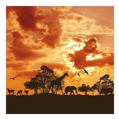 PPS. Imaging GmbH Tapete Tanzania Sunset 288 cm H x 288 cm B
