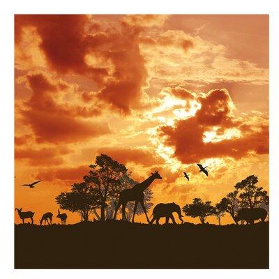 PPS. Imaging GmbH Tapete Tanzania Sunset 336 cm H x 336 cm B