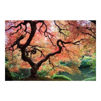 PPS. Imaging GmbH Tapete Japanischer Garten 225 cm H x 336 cm B