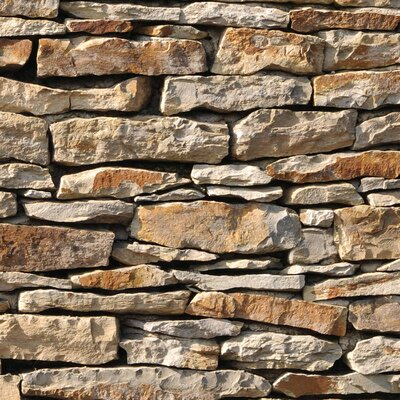 PPS. Imaging GmbH Tapete American Stonewall 240 cm H x 240 cm B