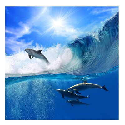 PPS. Imaging GmbH Tapete Playing Dolphins 192 cm H x 192 cm B