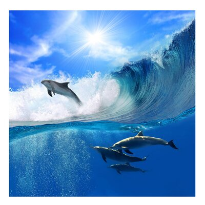 PPS. Imaging GmbH Tapete Playing Dolphins 336 cm H x 336 cm B