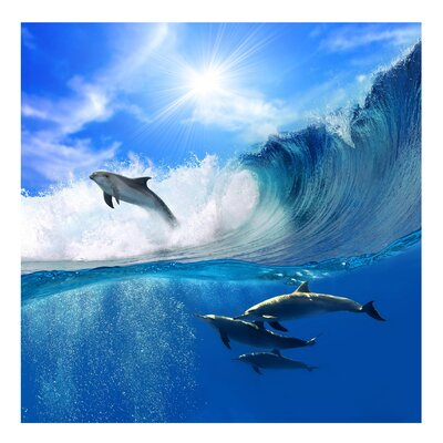 PPS. Imaging GmbH Tapete Playing Dolphins 288 cm H x 288 cm B