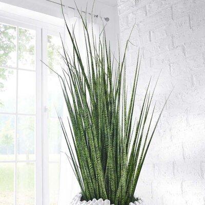 PureDay Kunstpflanze Zebragras