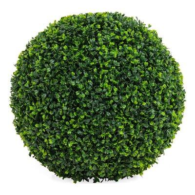 PureDay Kunstpflanze Buchsbaumkugel