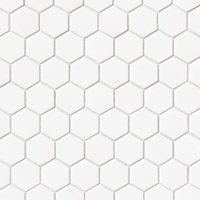 "Hex 2"" x 2"" Porcelain Mosaic Tile in Glossy White"