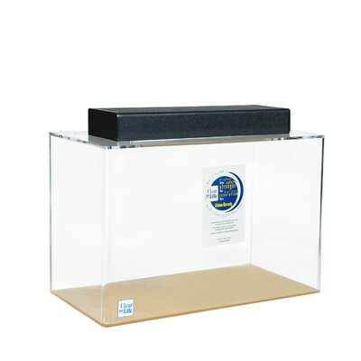 "Mulligan Rectangle Acrylic Aquarium Tank Color: Clear, Size: 24"" H x 72"" W x 24"" D"