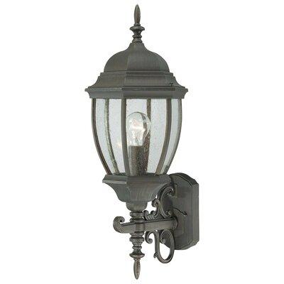 Thomas Lighting Covington 1 Light Outdoor Wall Lantern