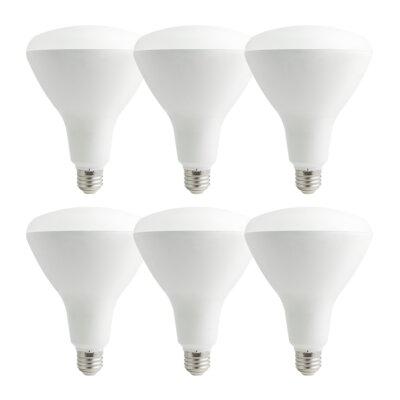 17W E26/Medium LED Light Bulb Pack of 6