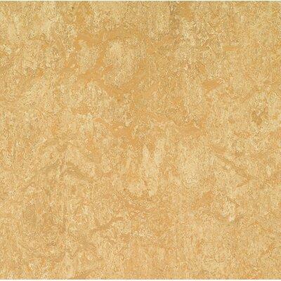 "Marmoleum Click Cinch Loc 11.81"" x 11.81"" x 9.9mm Cork Laminate Flooring in Tan"